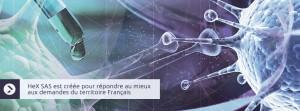 HeX SAS est créée pour répondre au mieux aux demandes du territoire français